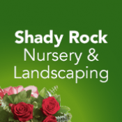 Shady Rock Nursery